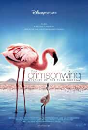 The Crimson Wing Mystery of the Flamingos (2008) - Cartoon Dubbed Movies